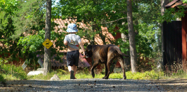 Barn och djur - Empati för djur och människor hör samman