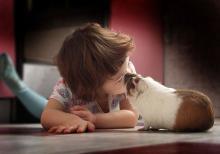 Att känna med djur och med människor hör samman