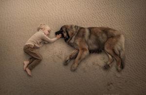 Att arbeta med utsatta djur, självmedkänsla