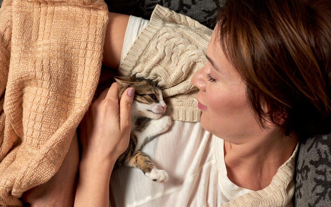 Kattbeteenden och problem 4 – när vi inte är kompatibla